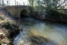 A bridge on the river Wensum